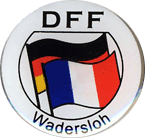 dff-pin